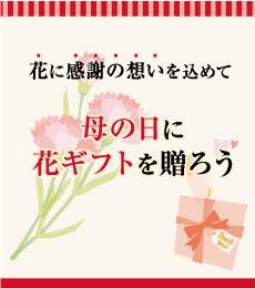 花に感謝の想いを込めて母の日に花ギフトを贈ろう