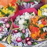 和び咲び店舗ページへ